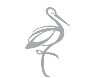 BLEICHE RESORT & SPA - Concierge
